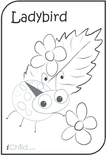 Thumbnail image for the Ladybird Colouring in Picture activity.