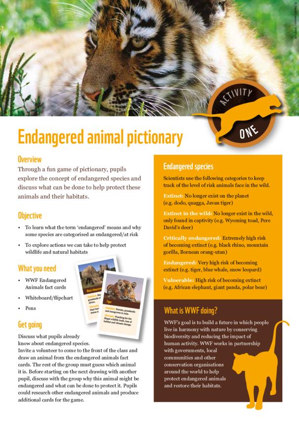 WWF Endangered Animal Pictionary