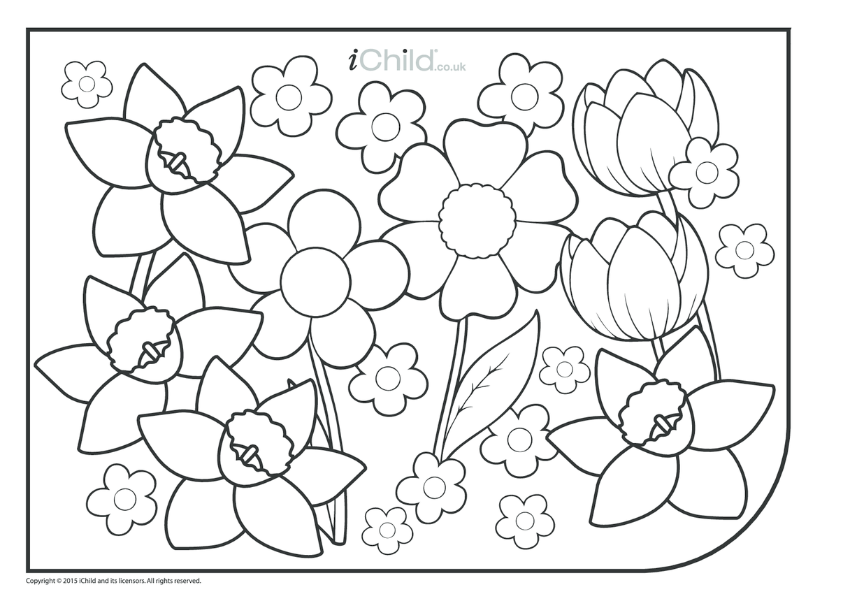 Spring Colouring in Picture - Flowers