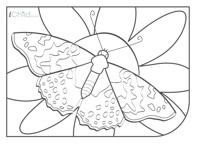 Thumbnail image for the Butterfly Colouring in picture activity.