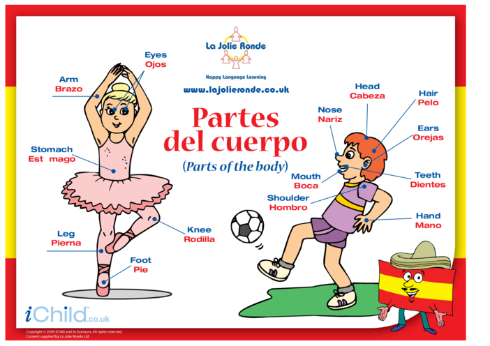 Thumbnail image for the Parts of the Body in Spanish activity.