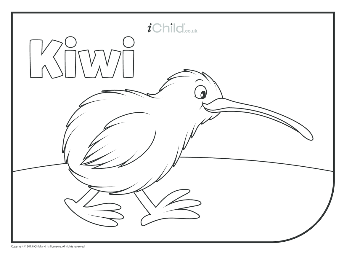 Kiwi Bird Colouring In Picture Ichild