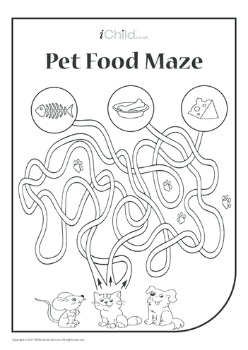 Thumbnail image for the Pet Food Maze activity.