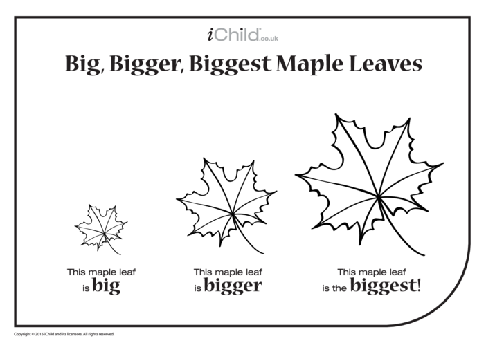 Thumbnail image for the Big, Bigger, Biggest  Maple Leaf activity.