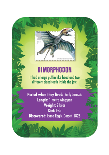 Thumbnail image for the Dinosaur Fact Card- Dimorphodon (A4) activity.