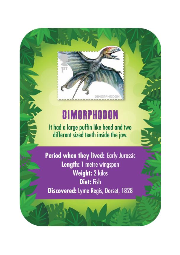 Dinosaur Fact Card- Dimorphodon (A4)