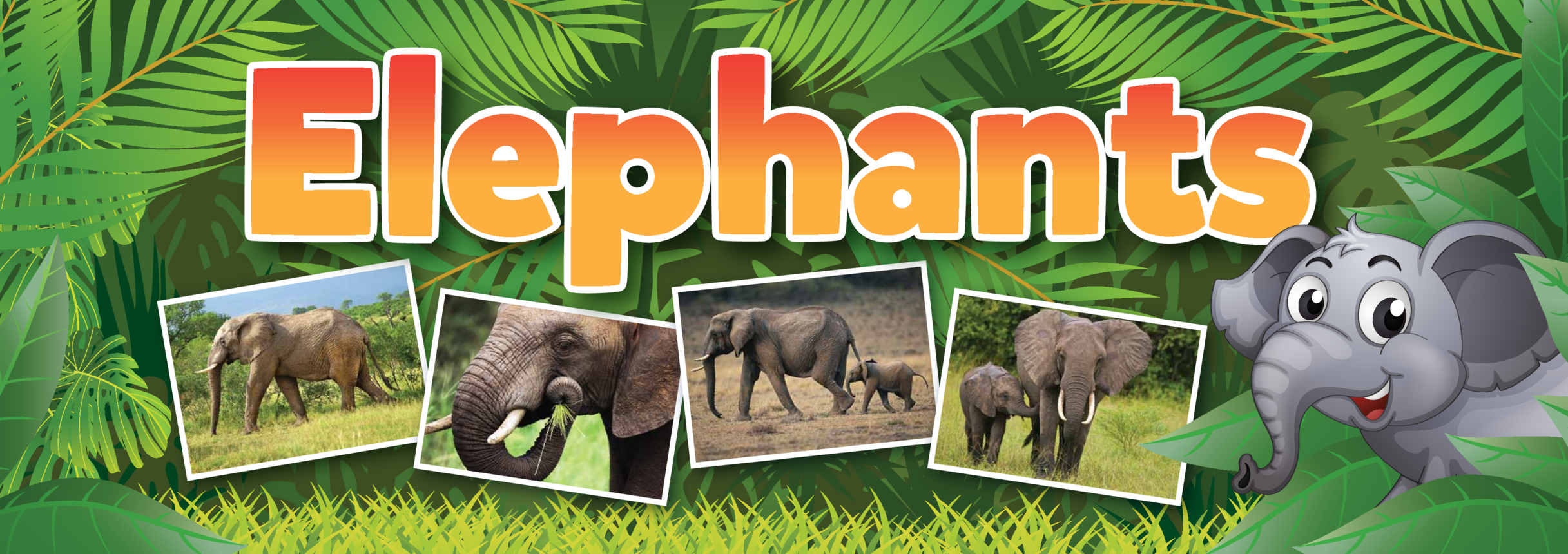 Elephants Wall Display Banner