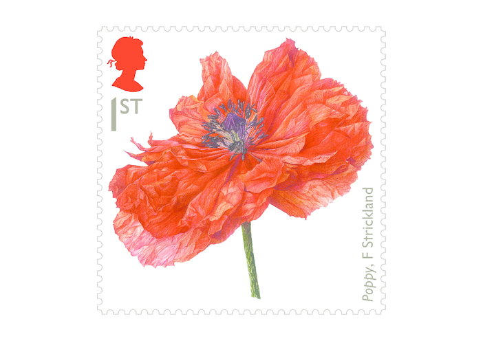 Thumbnail image for the Royal Mail iStamp Club The Great War 1914 - Poppy Stamp activity.