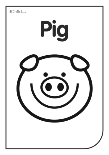 Thumbnail image for the Black & White Poster: Pig Face activity.