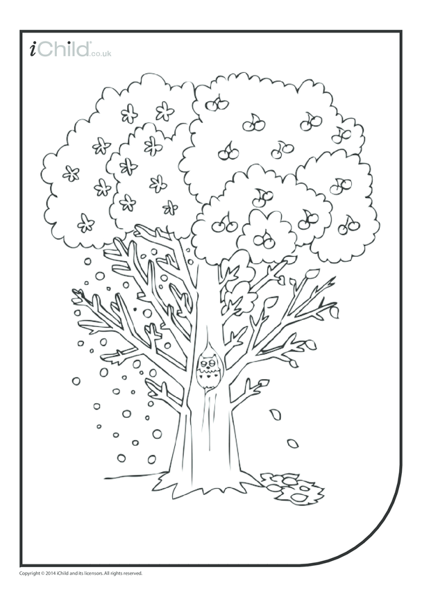 Tree Colouring in Picture