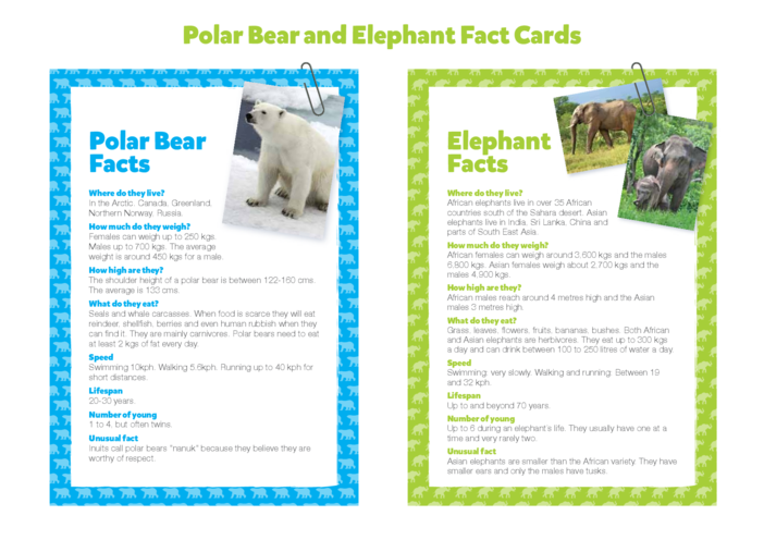 Thumbnail image for the Primary 1) Giants of the Animal Kingdom- Polar Bear & Elephant Fact Cards activity.