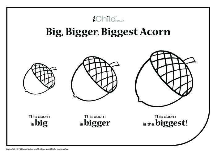 Thumbnail image for the Big, Bigger, Biggest Acorn activity.