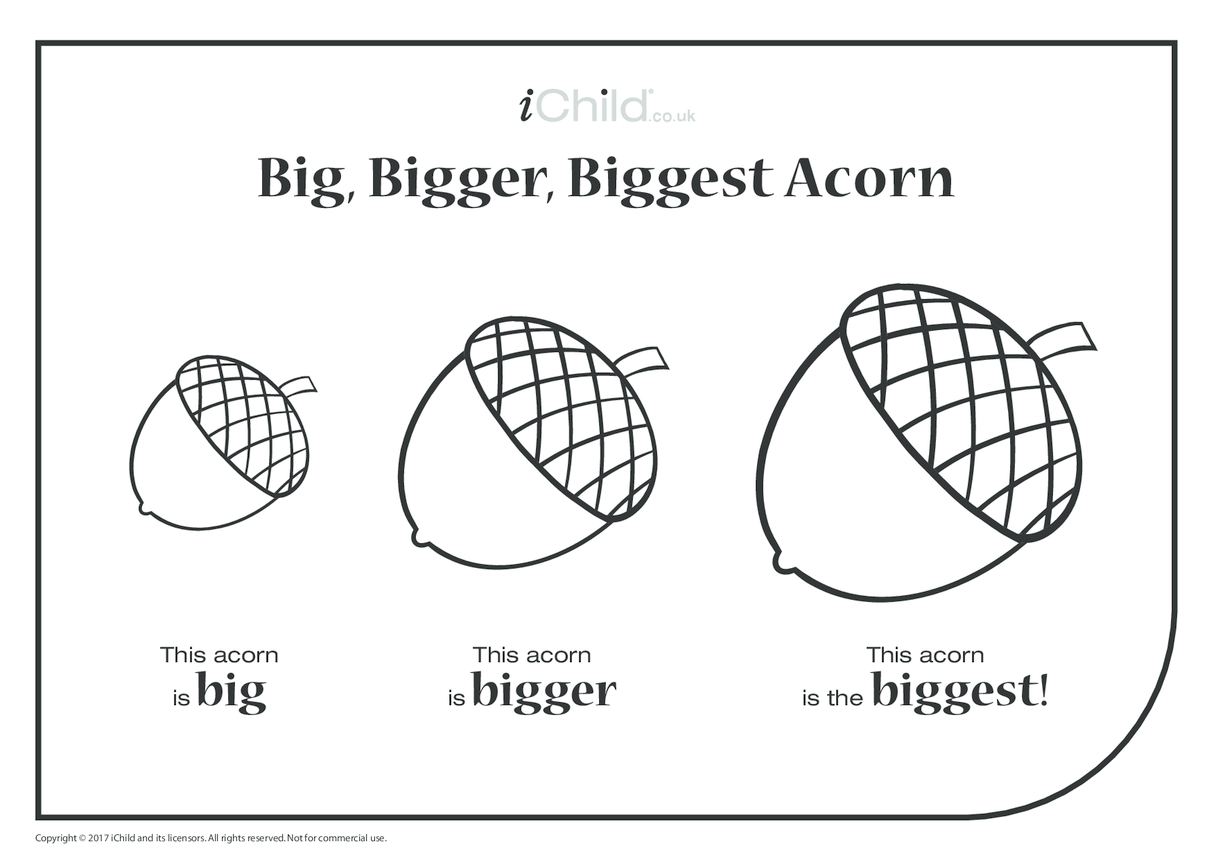 Big, Bigger, Biggest Acorn