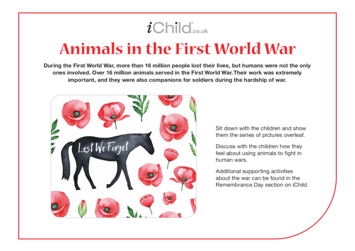 Thumbnail image for the Animals in the First World War - Historical Story activity.