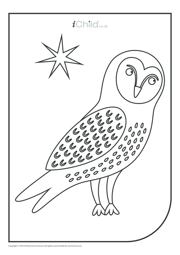 Snowy Owl Colouring in Picture