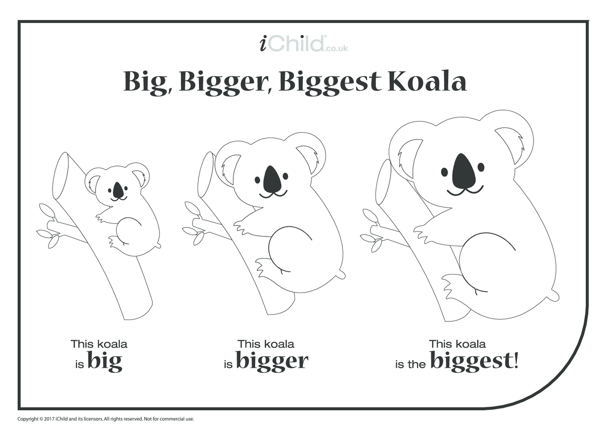 Big, Bigger, Biggest Koala