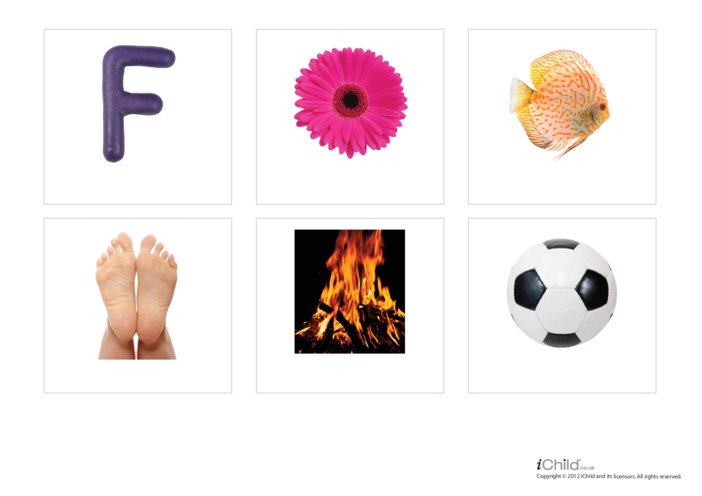 Thumbnail image for the Letter of the Alphabet: F - Photo Flashcard activity.