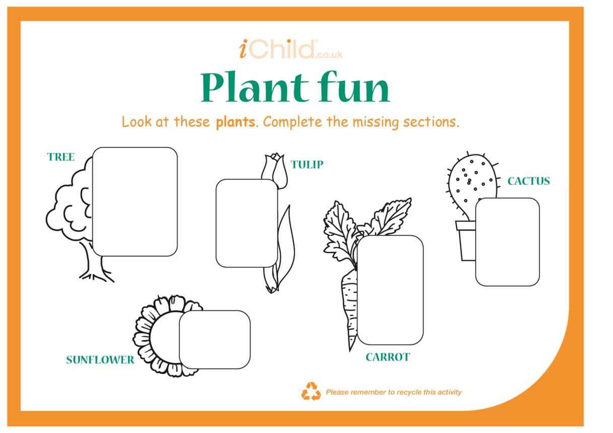 Plant Fun