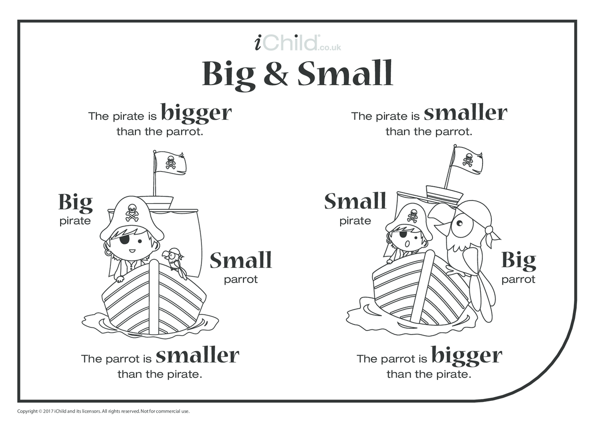Big & Small - Pirate & Parrot