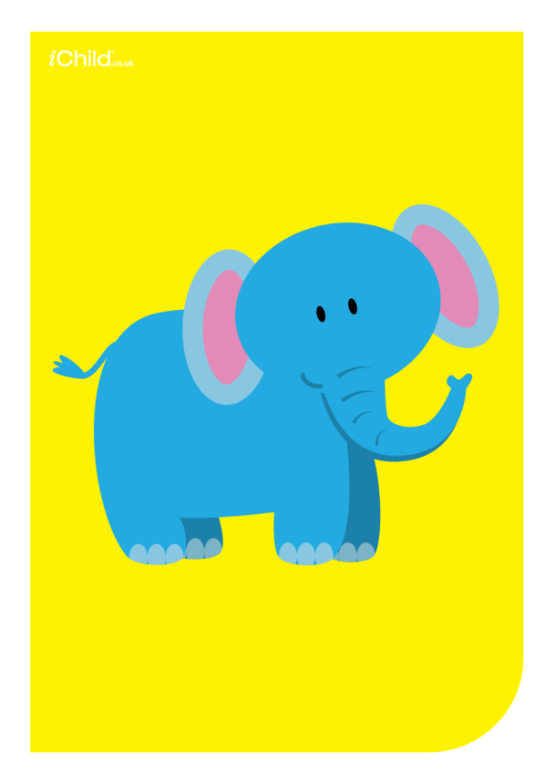 Contrasting Colours Poster: Elephant