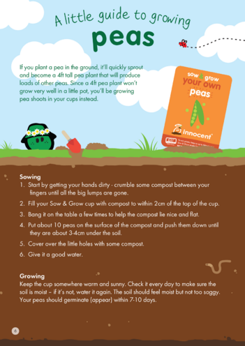 Thumbnail image for the innocent - Growing Guide - Peas activity.
