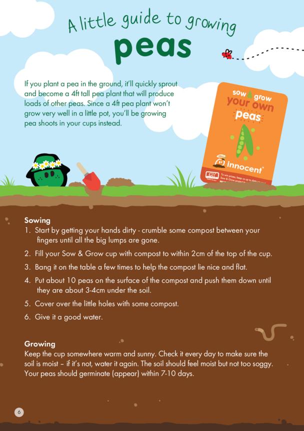 innocent - Growing Guide - Peas