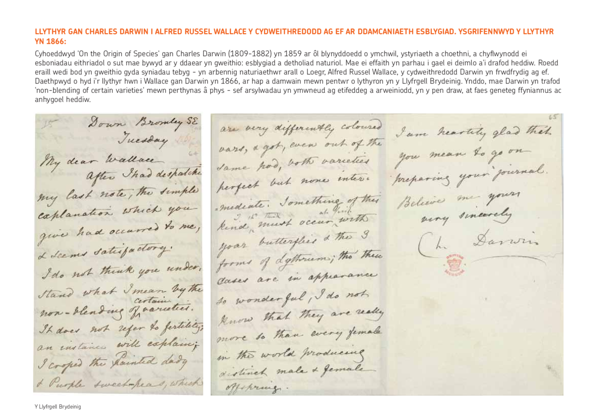 Welsh Translation - Lesson Plan 2: A Letter from Charles Darwin
