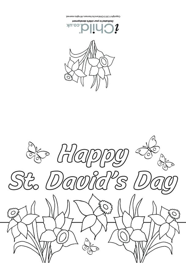 St. David's Day Card (daffodils)