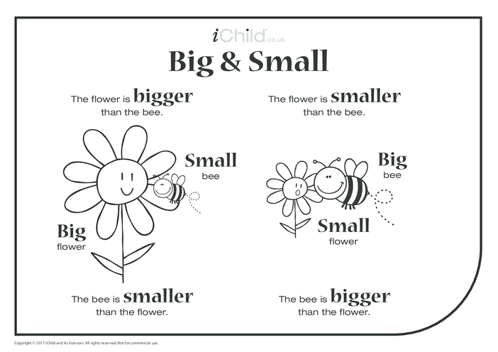 Thumbnail image for the Big & Small - Bee & Flower activity.