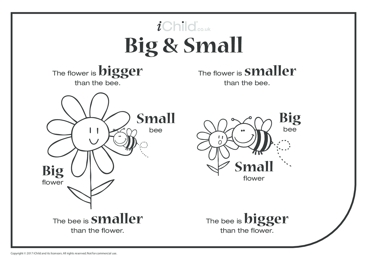 Big & Small - Bee & Flower