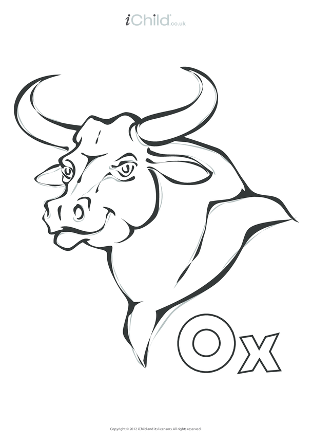 Ox Colouring in Picture