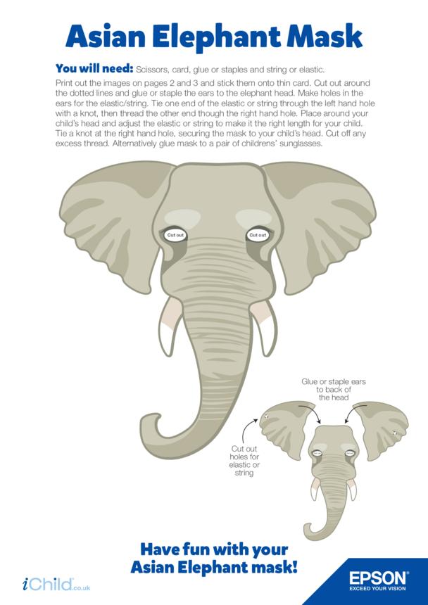 8) Epson Asian Elephant Face Mask