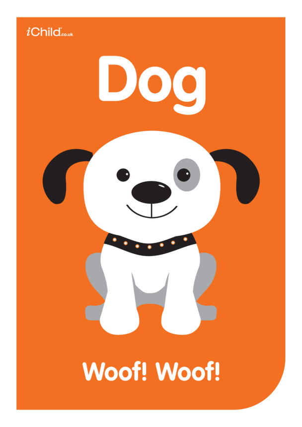 Contrasting Colours Poster: Dog