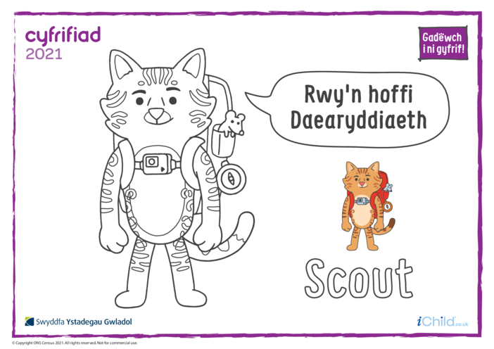 Thumbnail image for the Colour in Counter Cat Scout (Welsh) activity.