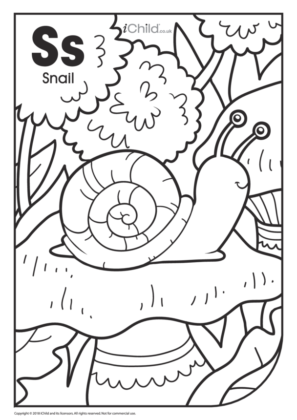 S is for Snail Colouring in Picture