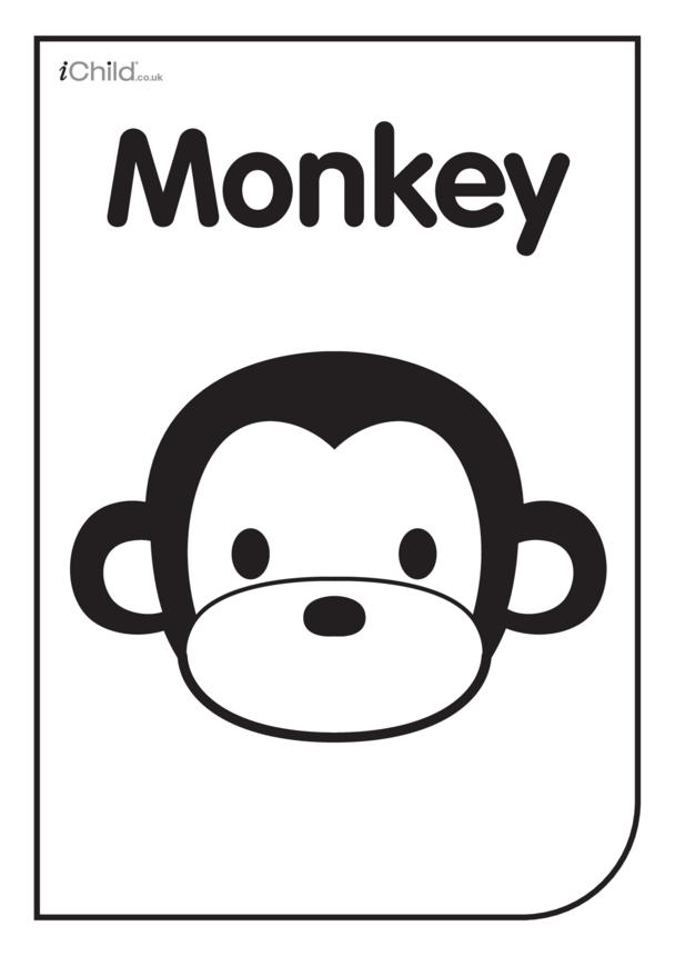 Black & White Poster: Monkey Face
