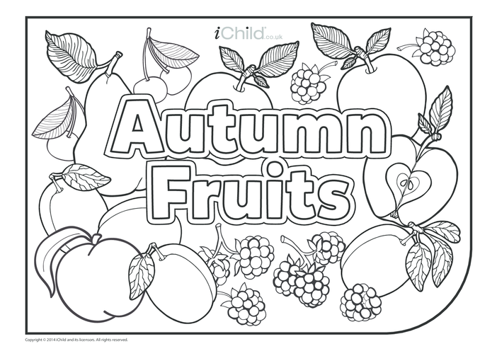 Thumbnail image for the Autumn Fruits Colouring in Picture activity.