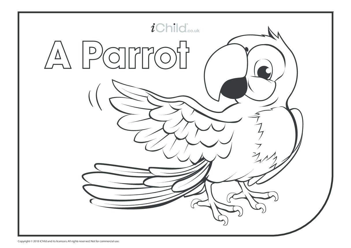 A Parrot Colouring in Picture