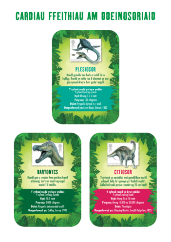 Thumbnail image for the Welsh Language Primary 1) The Real Giants- Dinosaur Fact Cards activity.