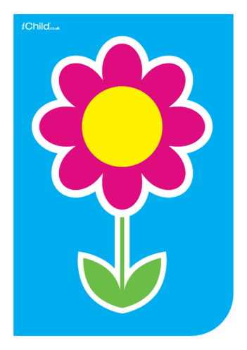 Thumbnail image for the Contrasting Colours Poster: Flower activity.