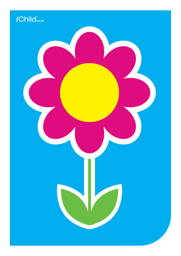 Contrasting Colours Poster: Flower