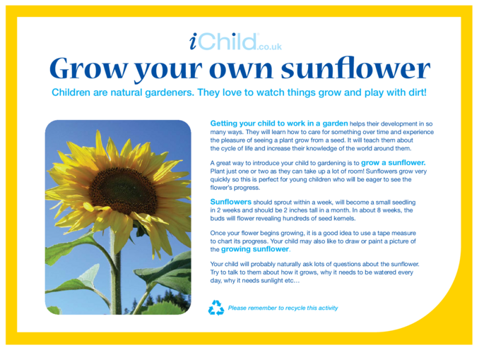 Thumbnail image for the Grow your own Sunflower activity.