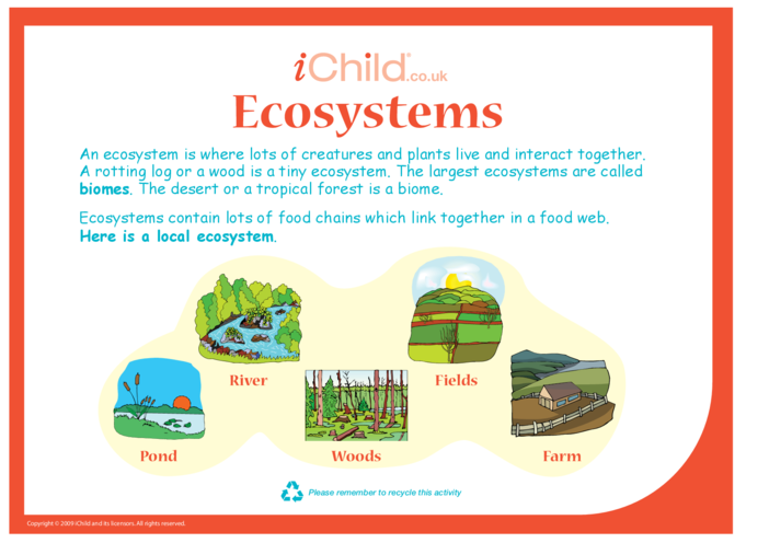 Thumbnail image for the Ecosystems activity.