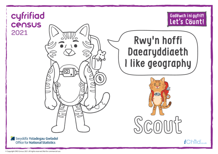 Thumbnail image for the Colour in Counter Cat Scout (Welsh/English) activity.