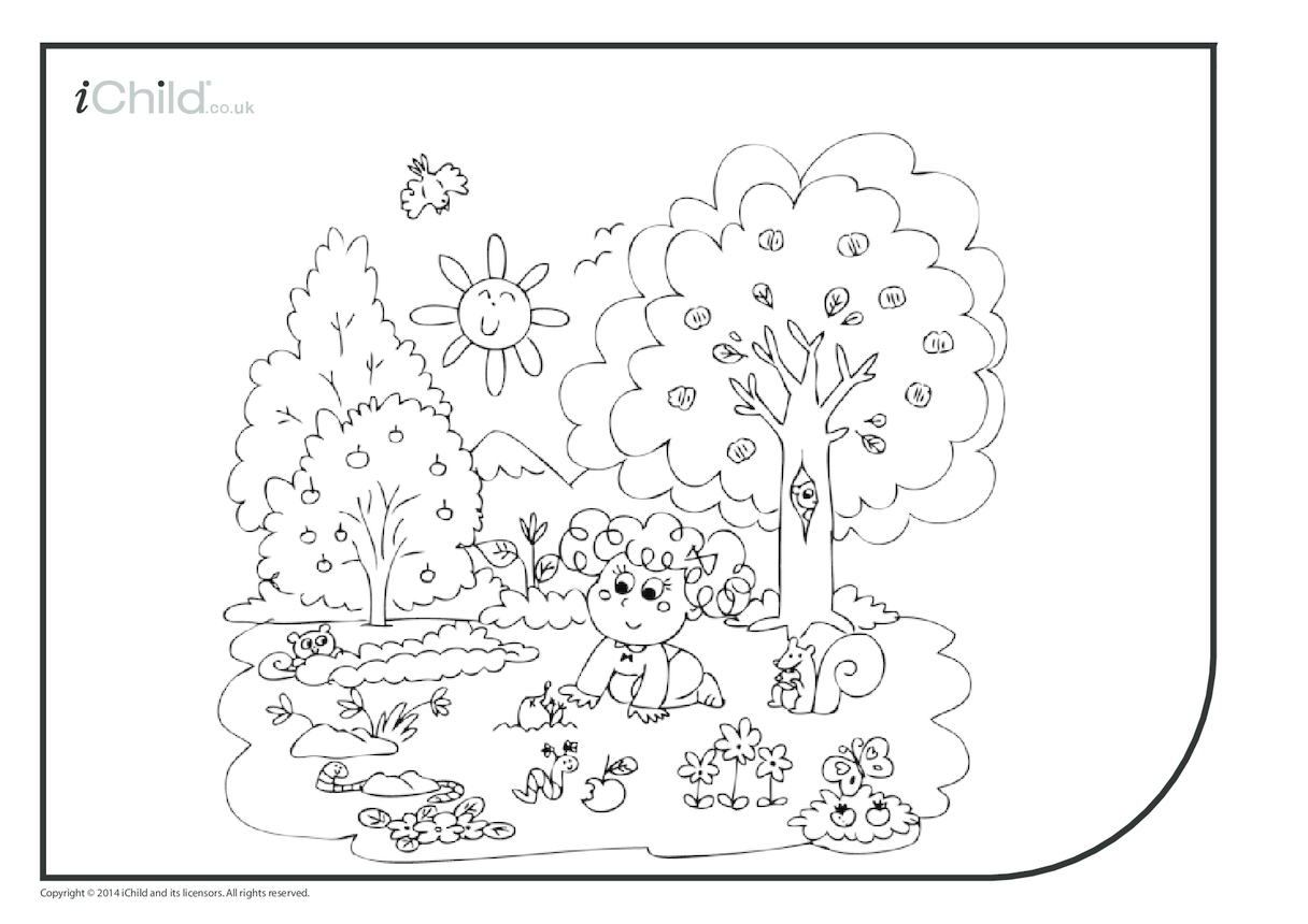Summer Outdoor Colouring in Picture