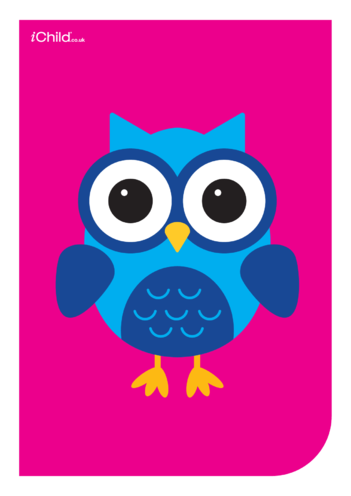 Thumbnail image for the Contrasting Colours Poster: Owl activity.