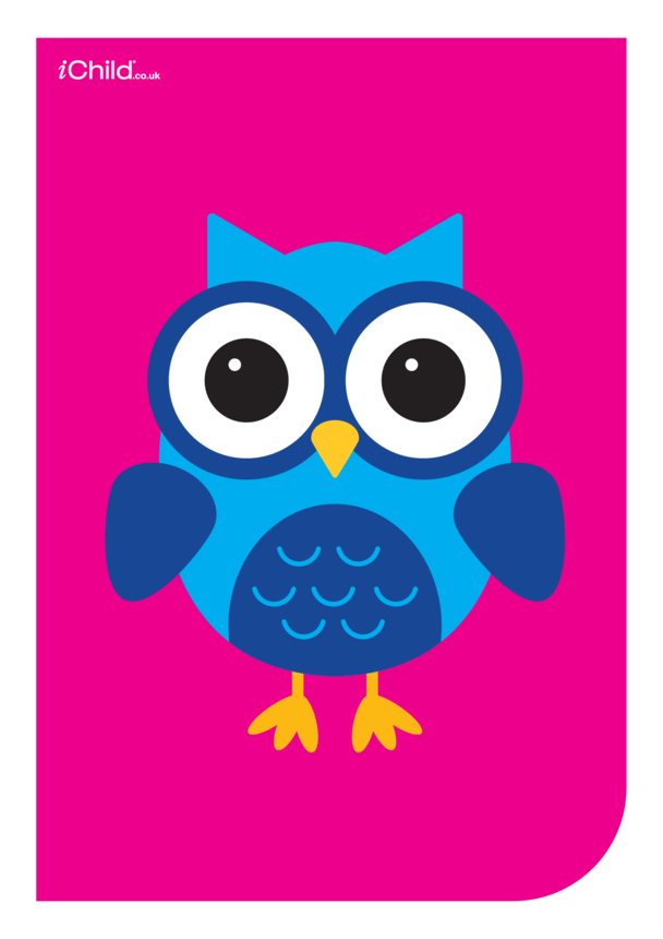 Contrasting Colours Poster: Owl
