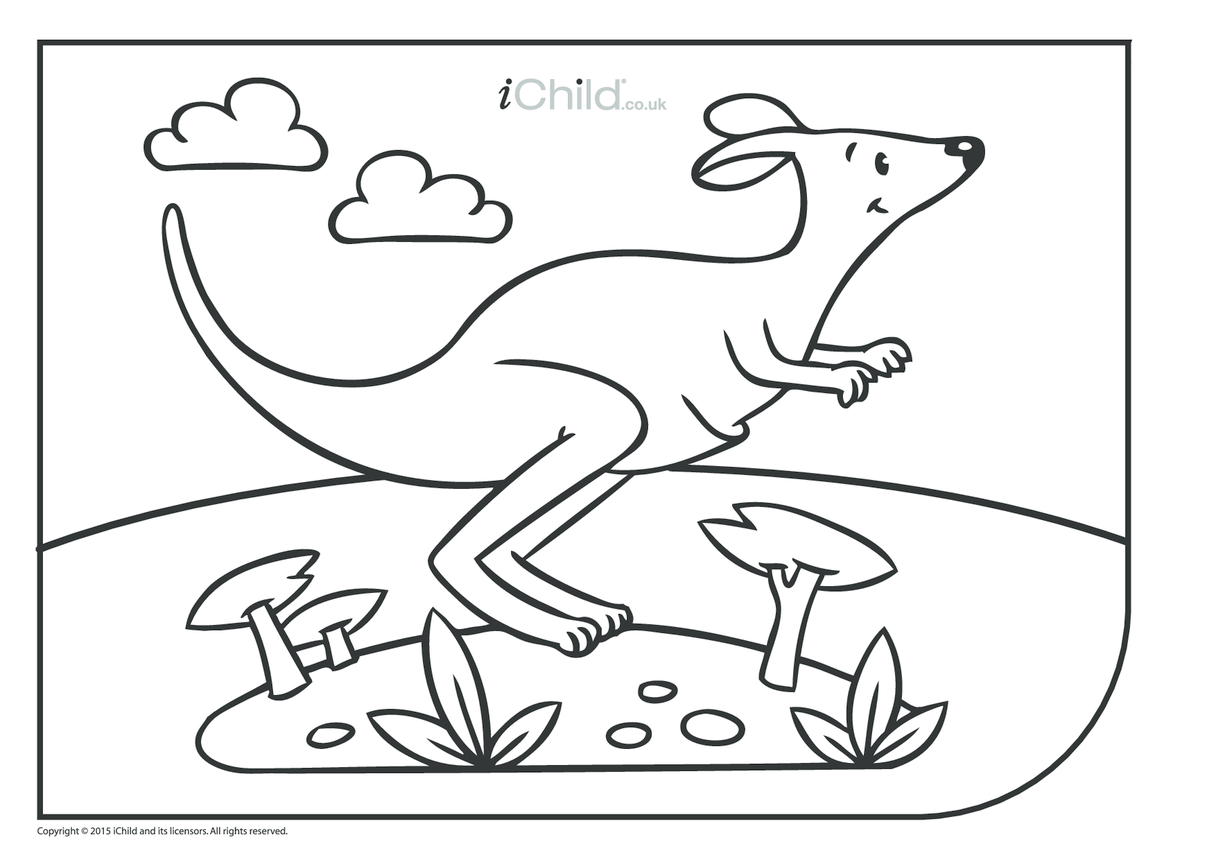 Kangaroo Colouring in Picture