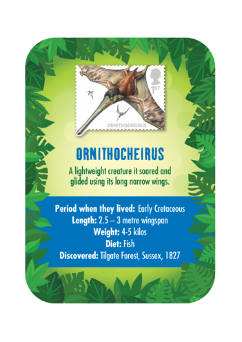 Thumbnail image for the Dinosaur Fact Card- Ornithocheirus (A4) activity.