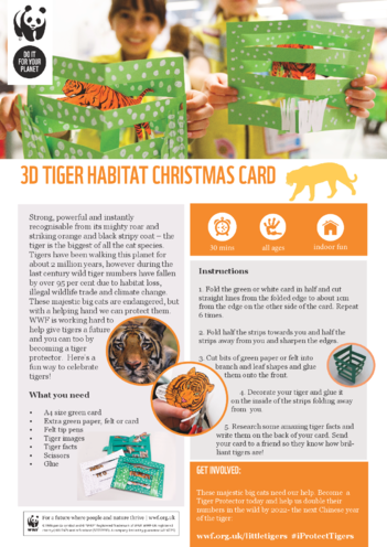 Thumbnail image for the WWF Tiger 3D Christmas Card activity.
